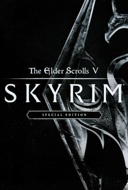 skyrim download poster