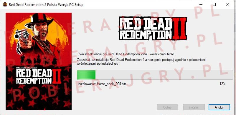 red dead redemption 2 instalator 5