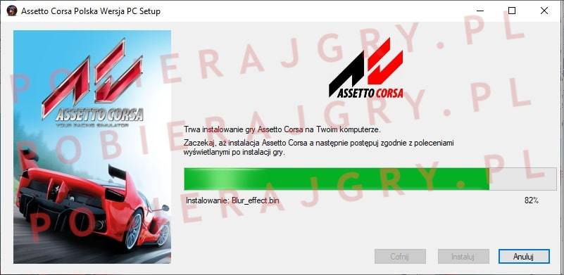 Assetto Corsa instalacja 6